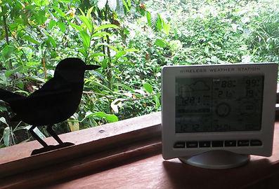 Climate at the nature reserve Un poco del Chocó