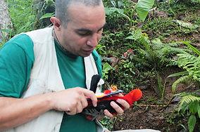 Studienprojekte im Naturreservat in Ecuador Südamerika