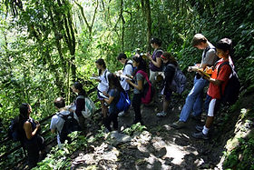 Study abroad: tropical ecology course in nature reserve in Ecuador South America