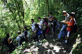Tropenökologie-Kurs in Naturreservat und Biologische Station in Ecuador Südamerika