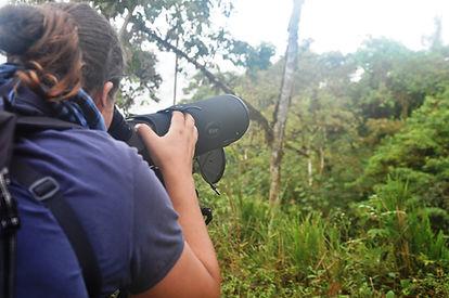 Bird Observatory and Bird Banding