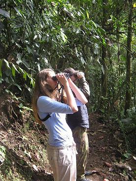 Vogelwarte und Vogelforschung in Ecuador