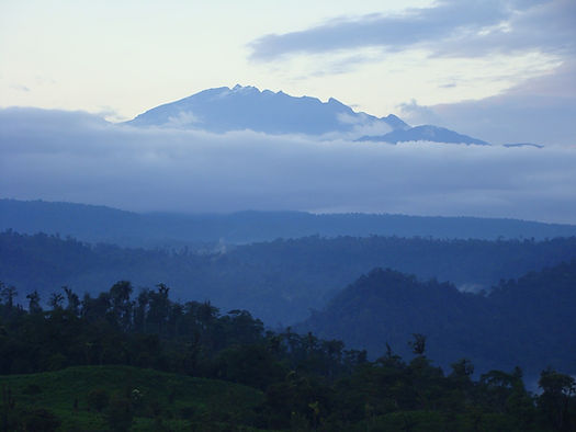 Chocó Regenwald mit Blick auf Vulkan Pichincha