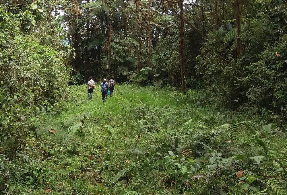 Our group walking along the pipeline in Sachatamia