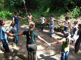 Study abroad: conservation internships in nature reserve in Ecuador South America