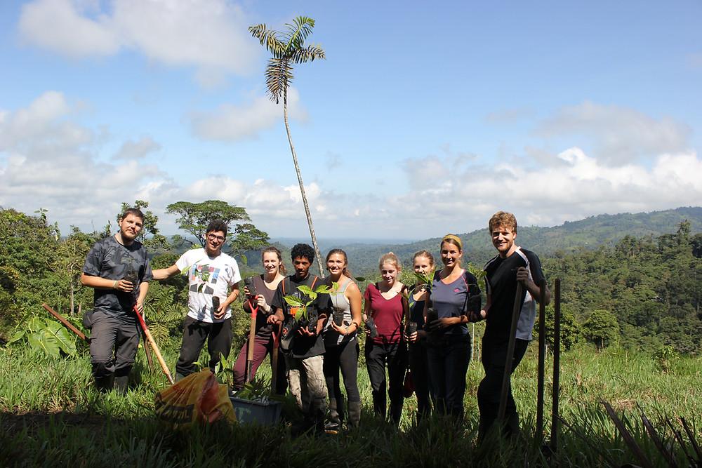 The tree planting crew