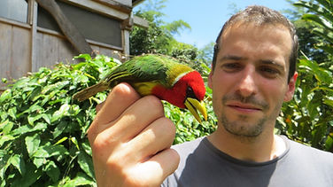 Biology Internship Biological Station Un poco del Chocó Ecuador South America