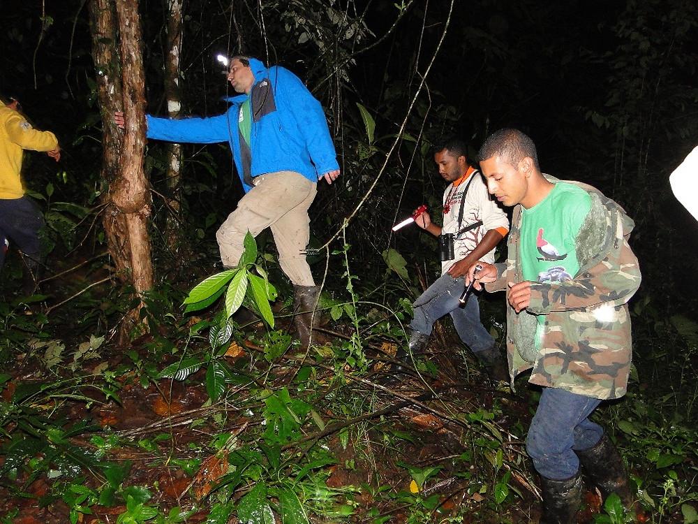 CBC Un poco del Chocó-Tracking the army ants