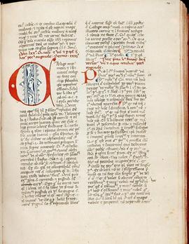 Handschrift, ca. 1350