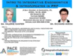 INT.ENDO _ PRF Course FL.jpg