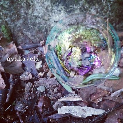 aromatic message photo ~なにをうつすの~