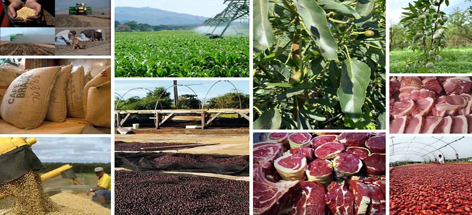 Hundley Food Commodities.png