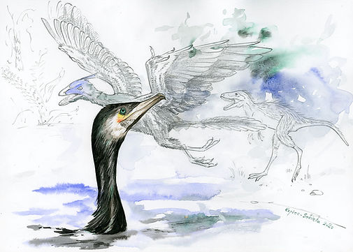 Ewolucja ptaków[4922].jpg