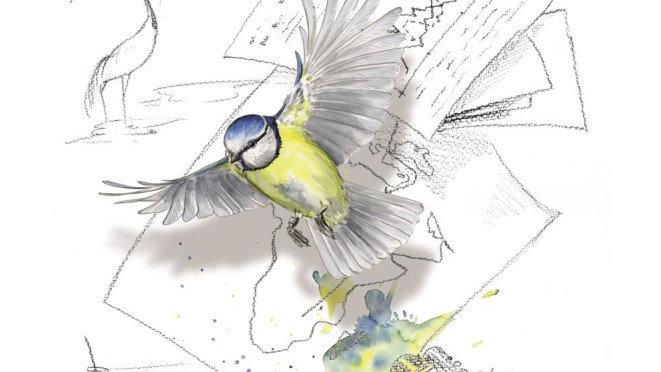 Broszura - Co powiedziały nam ptaki przez 60 lat badań? Ornitologia...