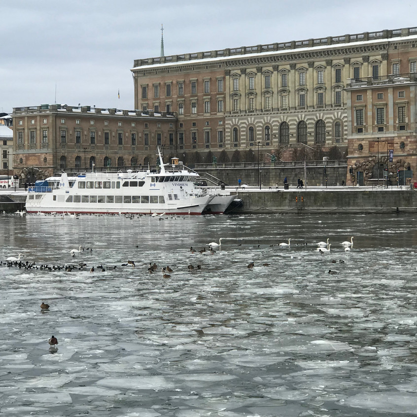 Stockholm, Andrea Gimeno