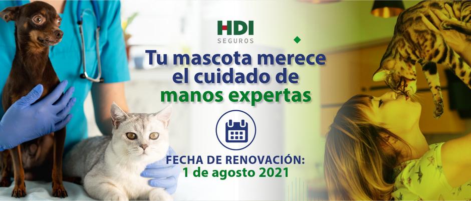 Renovación póliza de mascotas