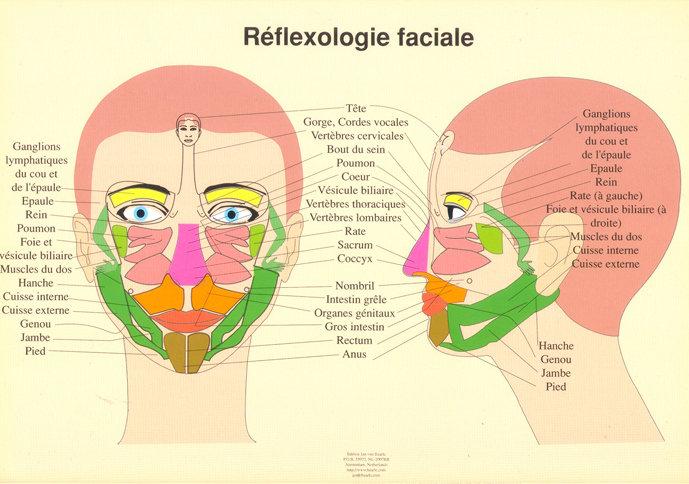 REflexologie du visage (30mn)