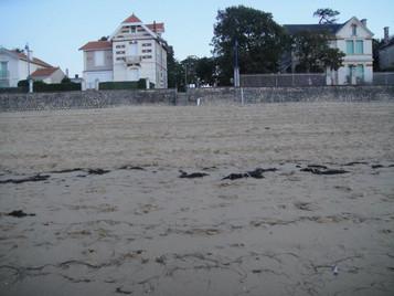 Vue de la rue où se trouve Escale Détente depuis la plage