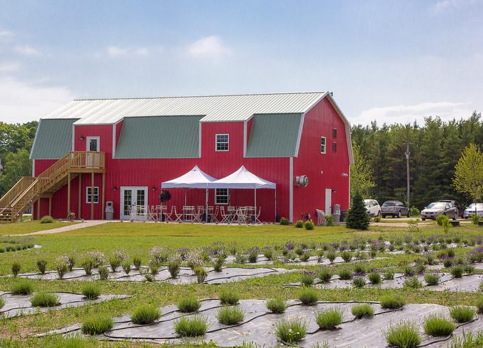 UABS Shop for Lavender Farm MI (2).jpg