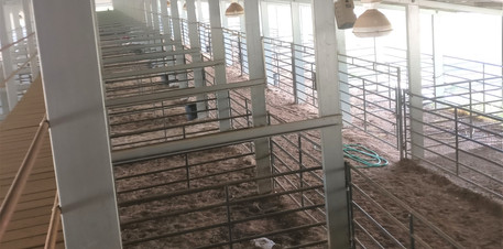 Long Building L_L Cattle Yards MS  (4).j