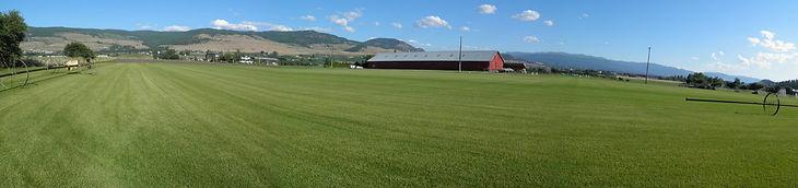 Panoramic shot of the turf farm