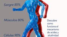 Acidez y Alcalinidad en el cuerpo humano