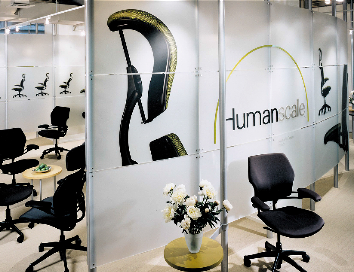 Graphic Design / Showroom Design