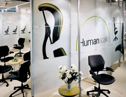 Graphic Design / Showroom Design