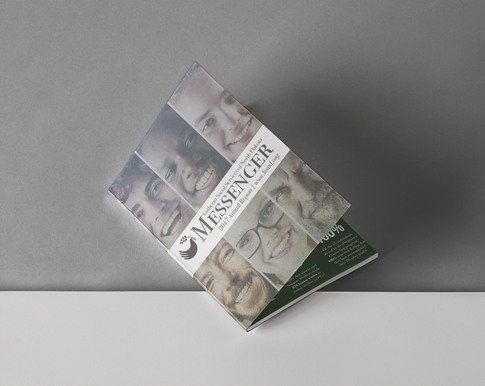 LSSND Annual Report 2017