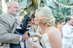 Key West wedding HD-9