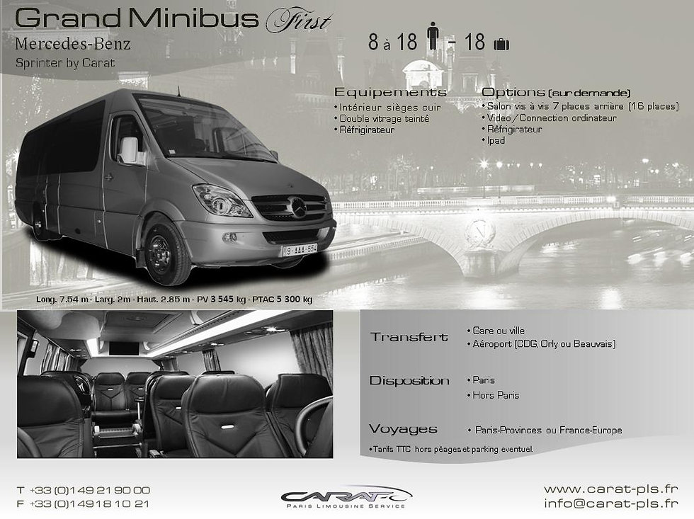 Location minibus