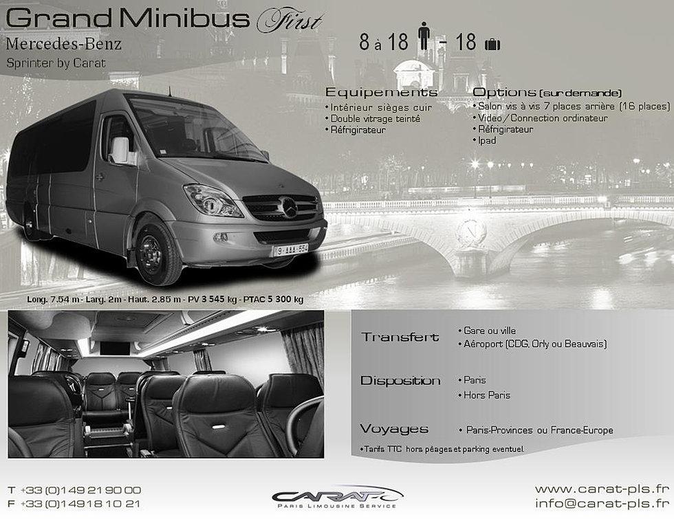 location minibus avec chauffeur. Black Bedroom Furniture Sets. Home Design Ideas