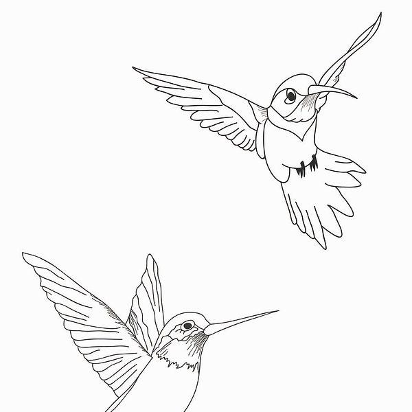 birds_together.jpg
