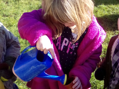 Flower power at Ryehills Pre-School
