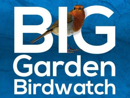 Big Garden Watch Weekend!
