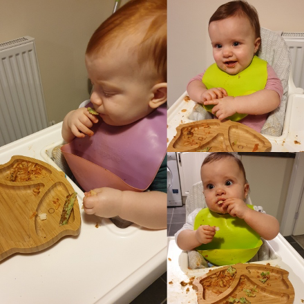 three weaning babies with bibs eating finger foods