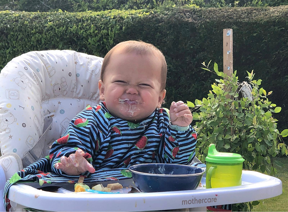 baby led weaning starting solids