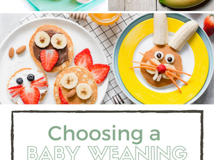 5 Reasons to Attend a Baby Weaning Class