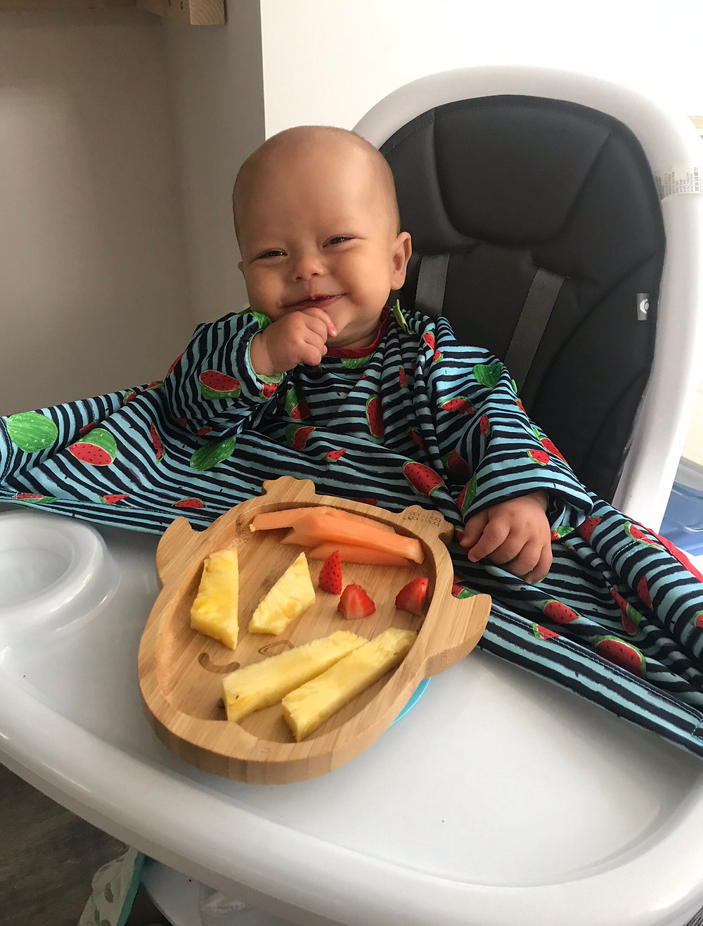 baby led weaning finger foods in high chair