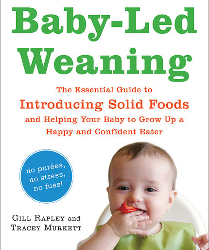 Gill Rapley Baby Led Weaning The Essential Guide to Introducing Solid Foods