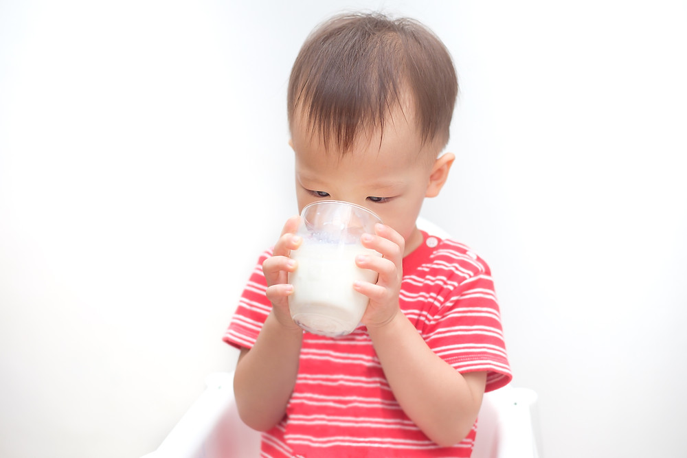 toddler drinking from a cup cows milk for babies to support child nutrition