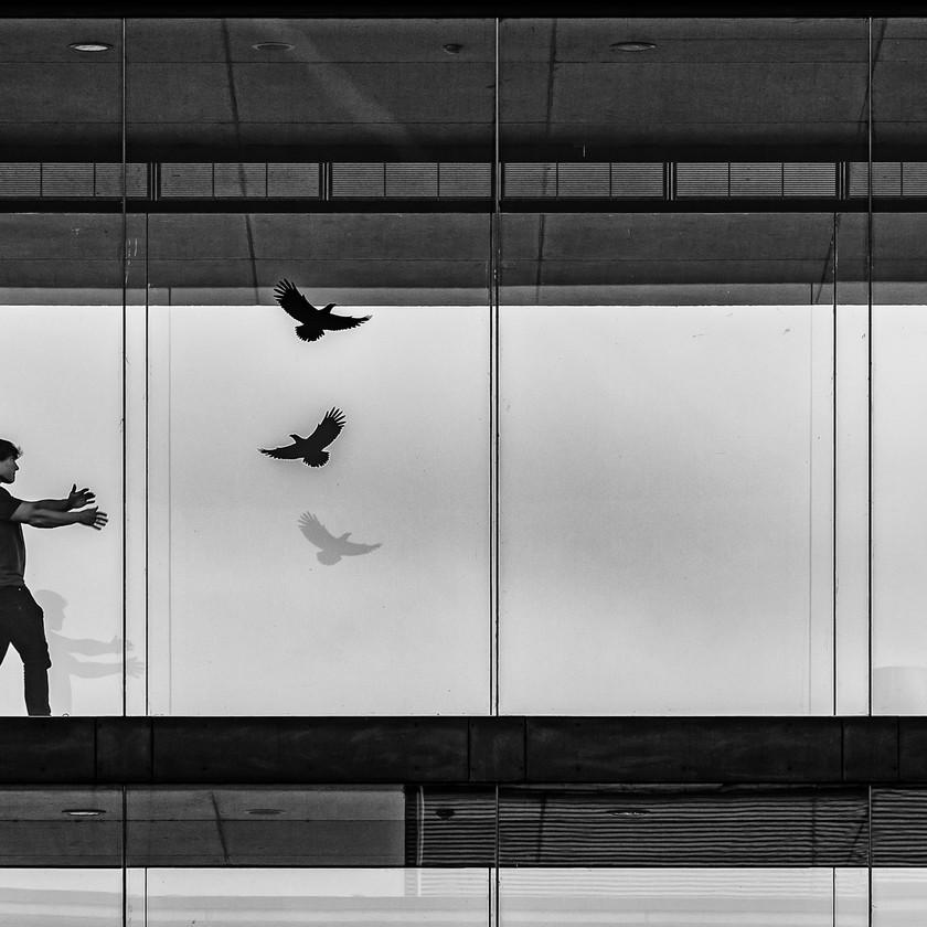 Fang den Vogel - Streetphotography auf dem Campus Riedberg