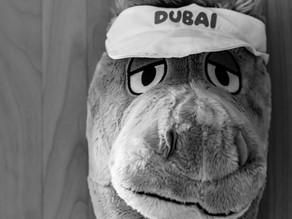 Dubai - Stadt der Superlativen
