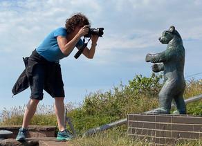 Naturfotografie auf der Insel Helgoland
