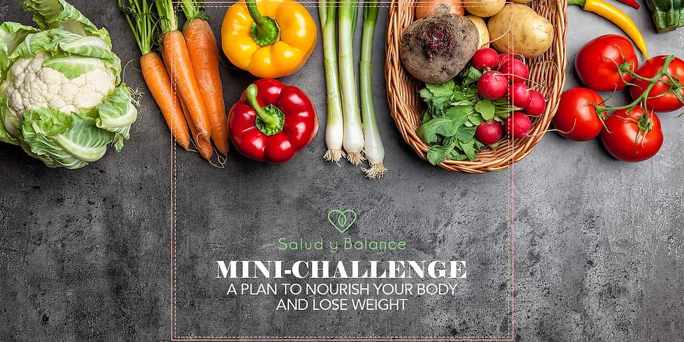 Mini-Challenge 2020