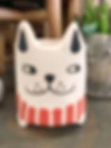 CatSucculentWorldMarket.jpg