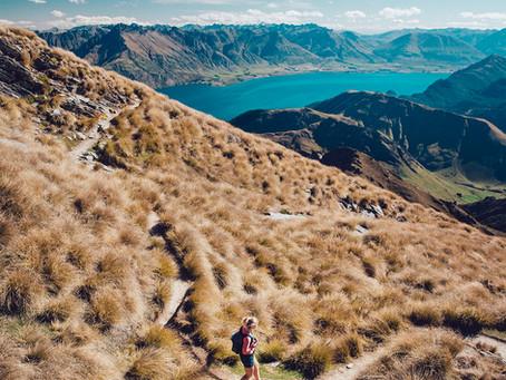 Hiking the Ben Lomond Track