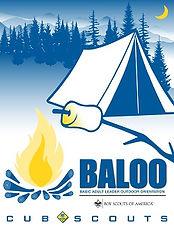 baloo training.jpg