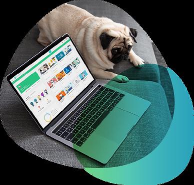 training-courses-online-platform-lms.png