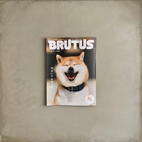 Brutus Vol. 913